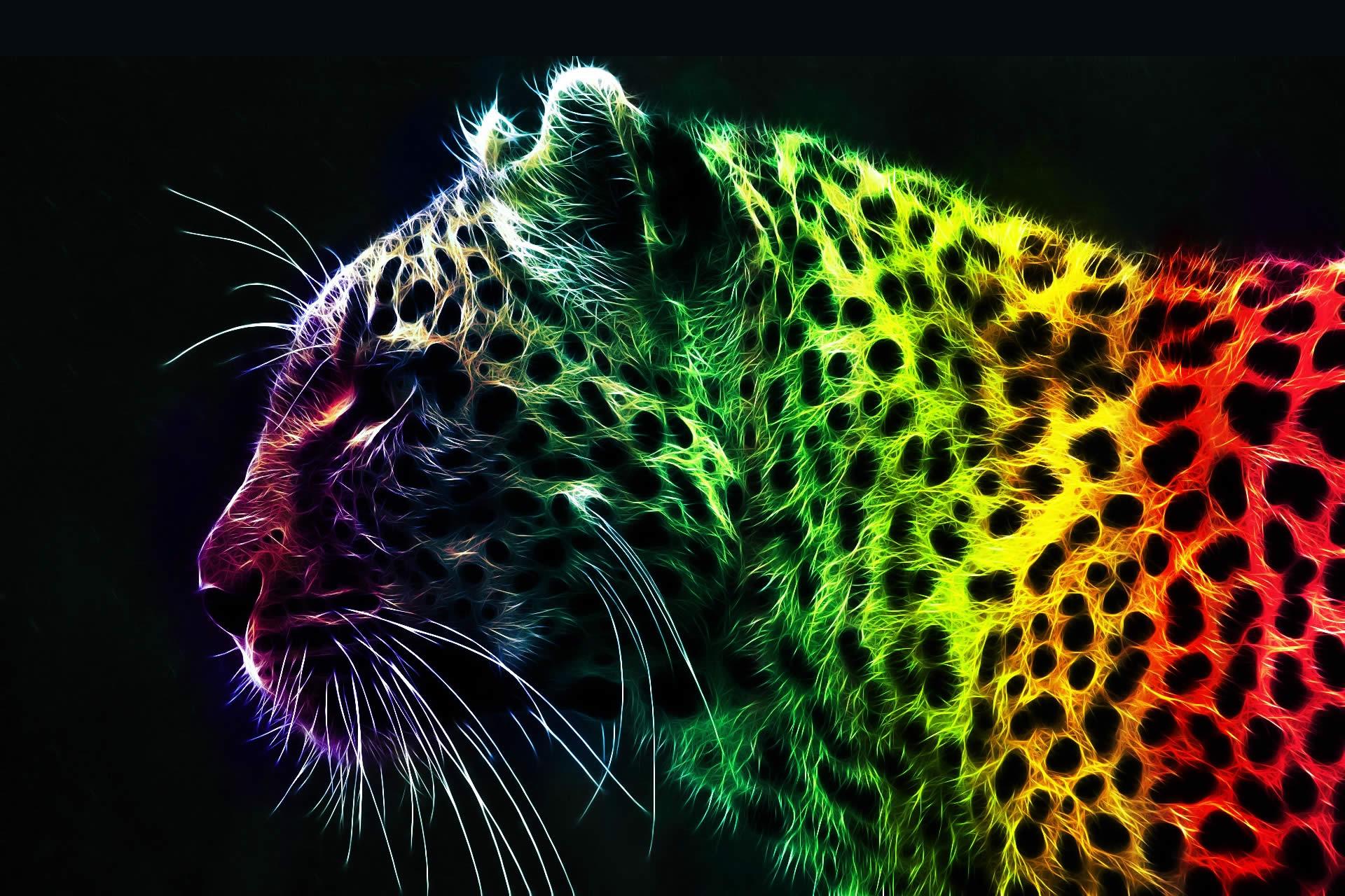 colorful-ISNET-5